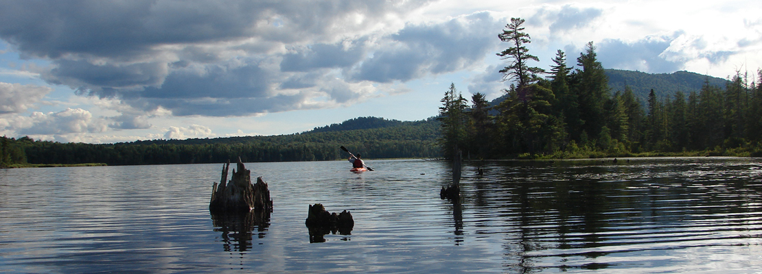 Pleasing Adirondack Real Estate For Sale In Upstate New York Rob Home Interior And Landscaping Mentranervesignezvosmurscom